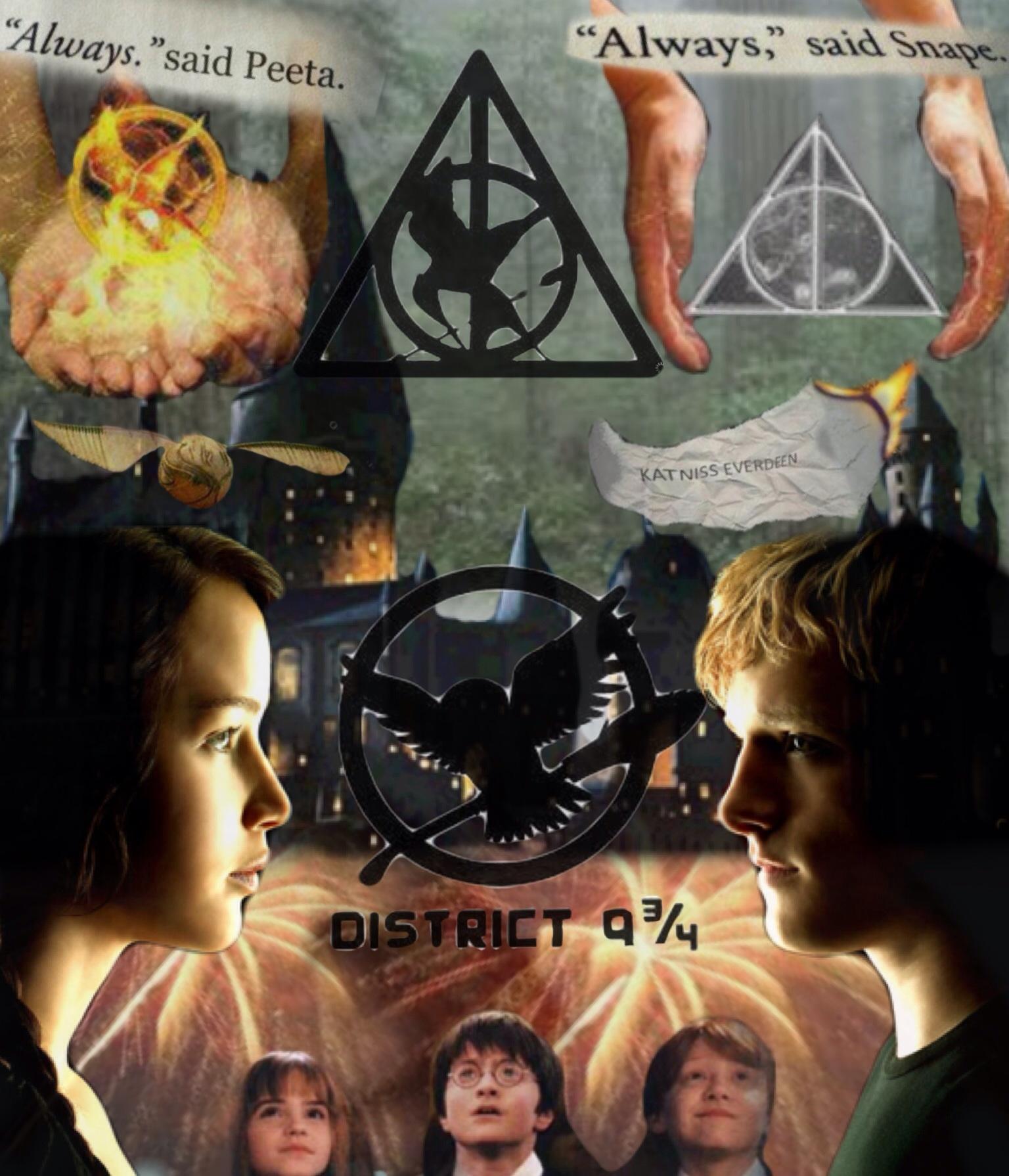 District 9 3/4 (Harry Potter/Hunger Games)