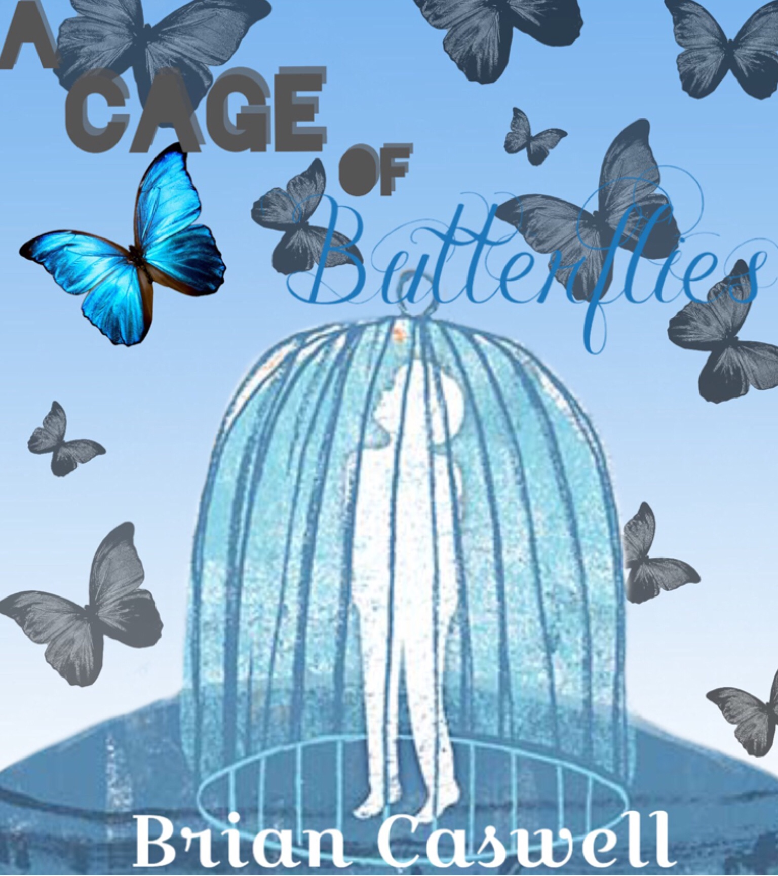 a cage of butterflies Butterfly cage-butterfly, insect, animal rearing/breeding/display cage, x x cu find this pin and more on monarch butterflies info by cathie nunez lepidtarium - butterfly and moth terrarium / parasitoid-proof rearing, breeding, display cage/habitat cu.