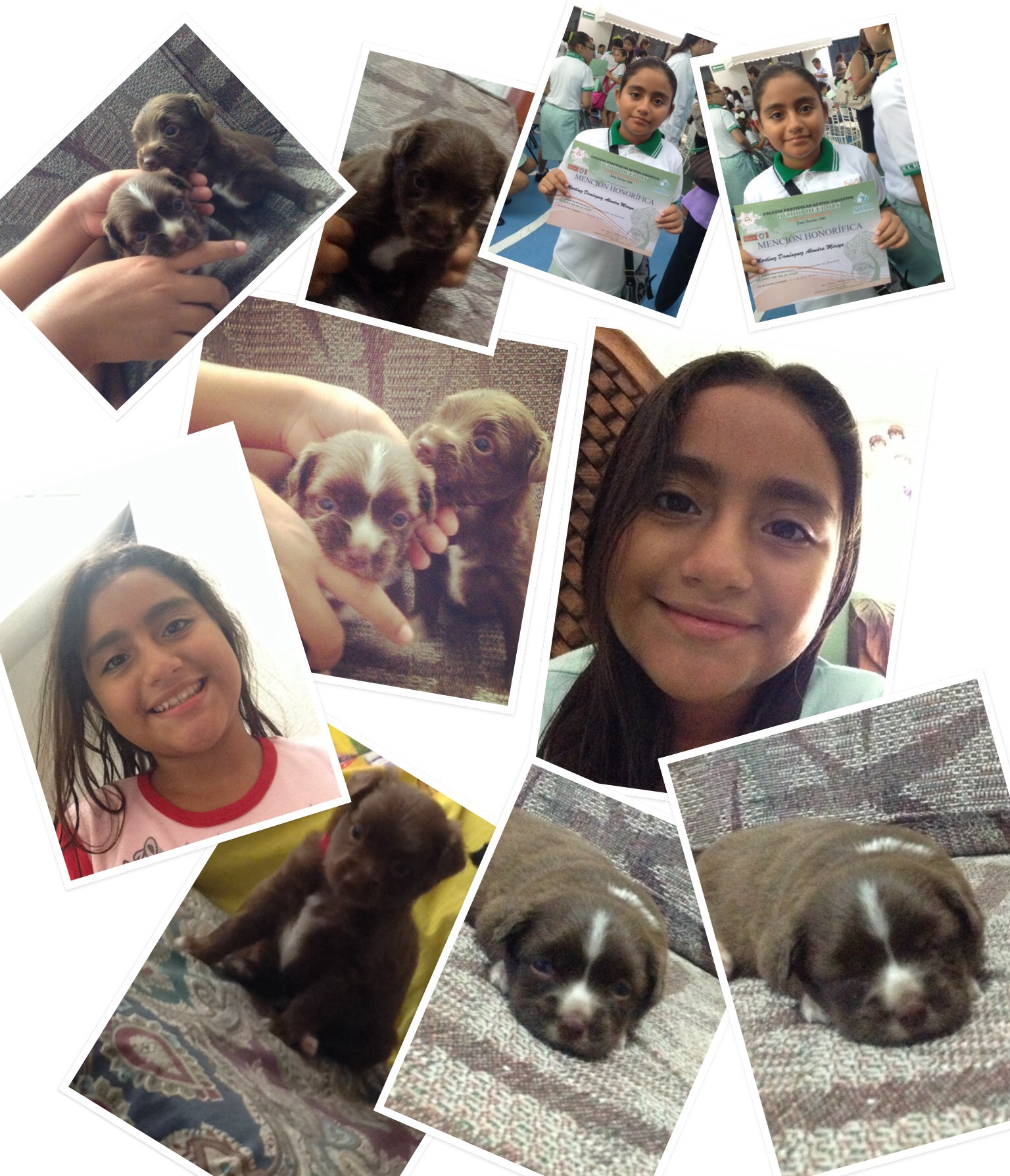 Mi hermoso collage