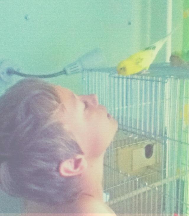 Милый птенчик:3