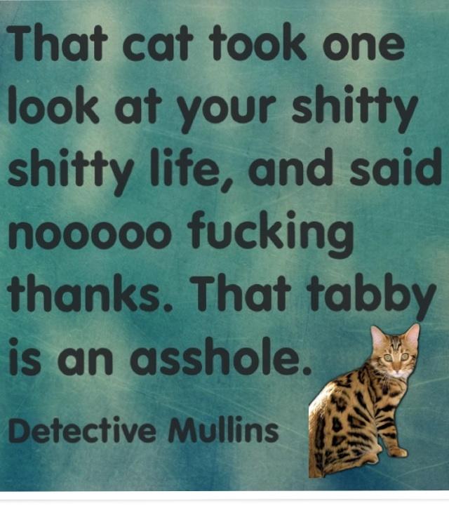Hahahaha! @theheatmovie #melissamccarthy