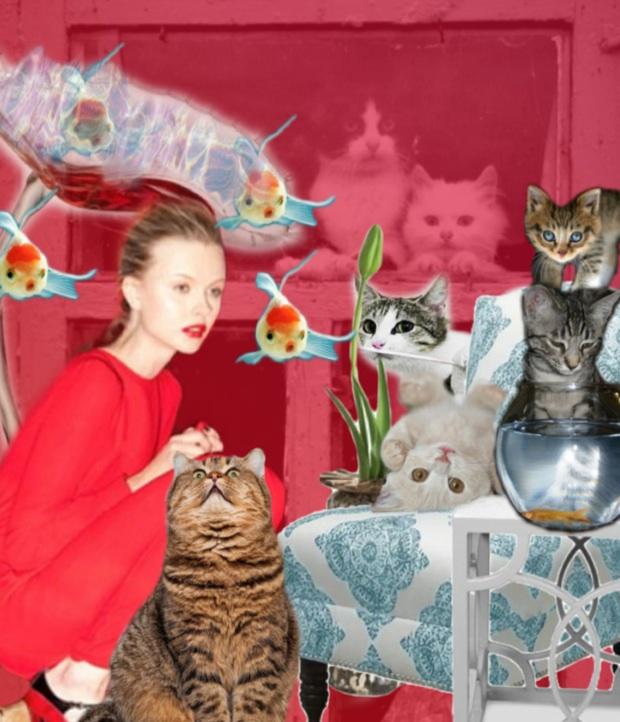 The BAZAAR: Cat Lady